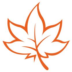 MindMaple logo
