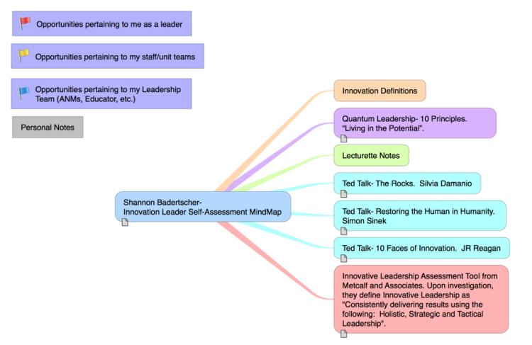 iThoughts: Shannon Badertscher- Innovation Leader Self-Assessment ...