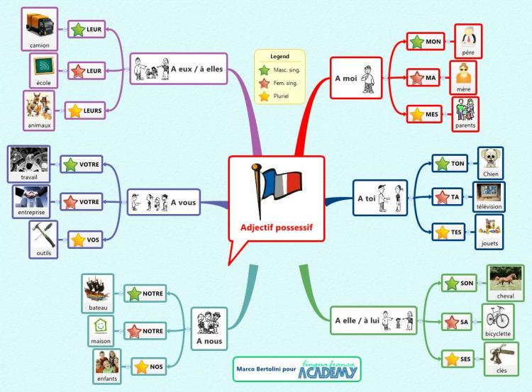 Adjectif possessif mind map | Biggerplate