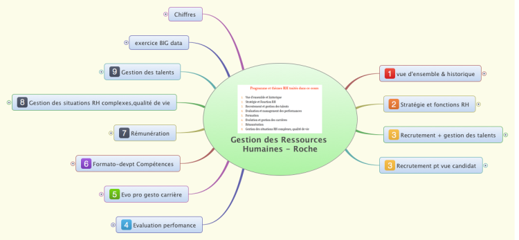 FOn2Dflh_Gestion-des-Ressources-Humaines-Roche-mind-map Online Curriculum Vitae Examples on college art instructor, for historians, personal statement, usa cv resume, nurse educator, bangladeshi structure,