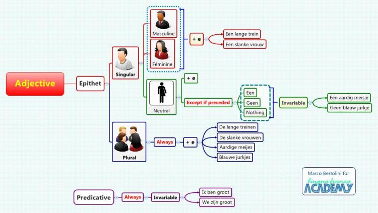 Adjective in Dutch: XMind mind map template | Biggerplate