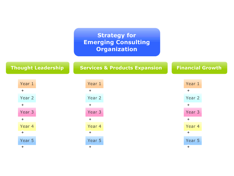 Strategy for Emerging Consulting Organization