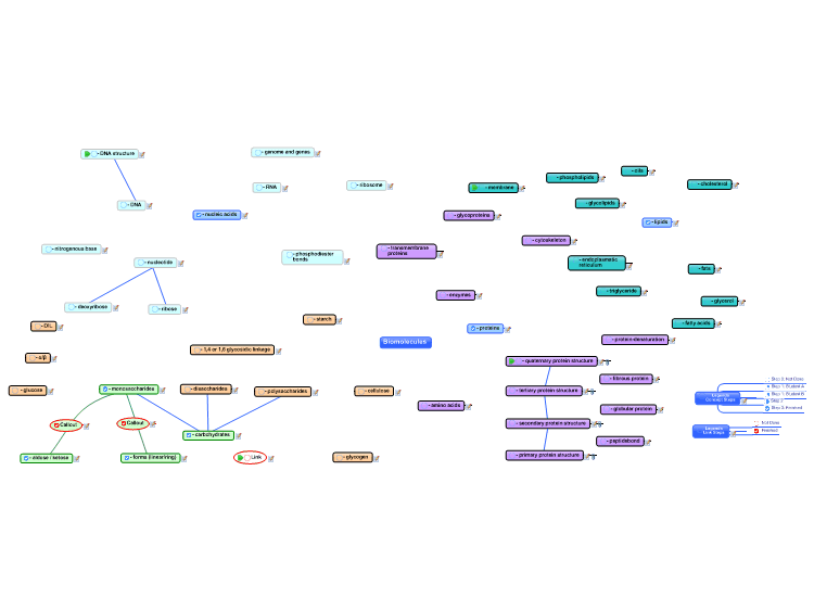 Escom Biomolecules Mindmanager Mind Map Template Biggerplate