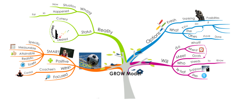 Peer Coaching - the GROW model