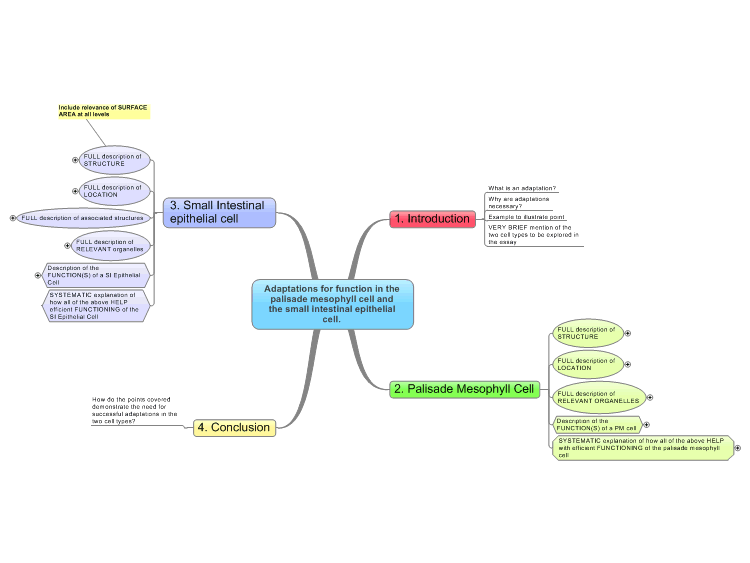 Adaptations of Cells Mind Map