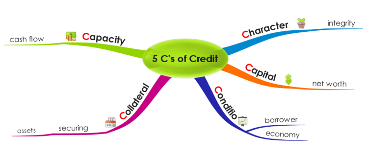 The 5Cs of Credit