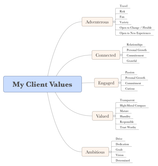 Client Values Example