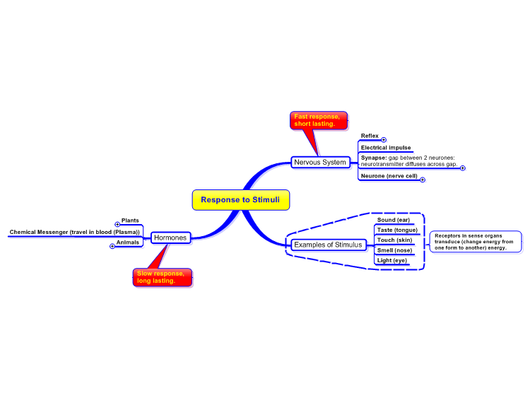 Mindmanager response to stimuli gcse mind map biggerplate response to stimuli gcse ccuart Gallery