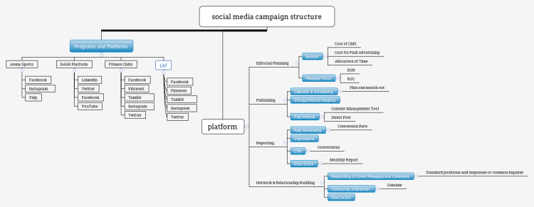 Social Media Campaign Structure Mind Map