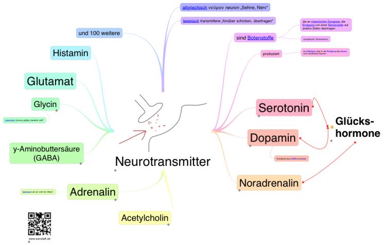 Gehirn Nutzung