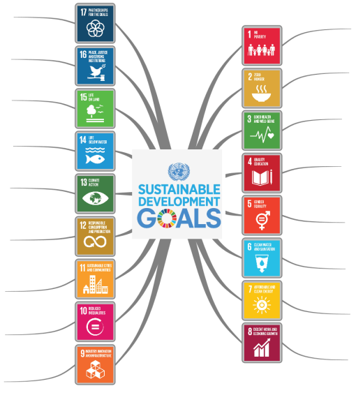 Seventeen Sustainable Development Goals