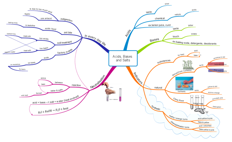 iMindMap: Class 7 science Acids, Bases and Salts (www ...