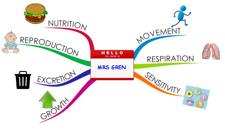 MRS GREN - 7 Characteristics of Life mind map