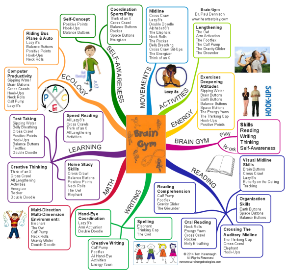 Brain Gym The Little Orange Book Mind Map Biggerplate