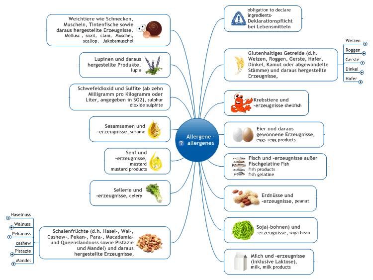Nahrungsmittel Allergene Food Allergenes on How To Make A Mind Map